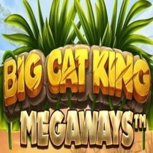 Big Cat King Megaways Arvostelu